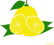 Lemon slices, collection of  illustrations Stock Photography