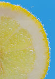 Lemon Slices deeply under water Royalty Free Stock Photography