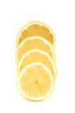 Lemon slices isolated on a white background Stock Image