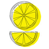 Lemon slices isolated on white background, vector illustration. Stock Photo