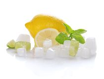 Lemon, slices of a juicy lime, mint and the ice Royalty Free Stock Photo