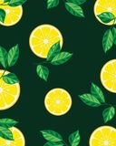Lemon slices with leaves royalty free illustration