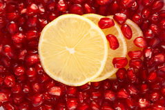 Lemon slices in pomegranate seeds Royalty Free Stock Photo