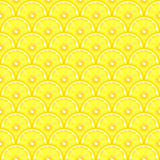 Lemon slices seamless Royalty Free Stock Images