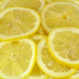 Lemon slices in sugar Royalty Free Stock Image