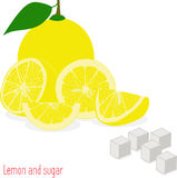 Lemon slices and sugar, collection of  illustrations Royalty Free Stock Images