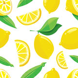 Lemon slices vector citrus seamless pattern Royalty Free Stock Photo