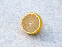 Lemon in the snow. Cold lemon in the snow Royalty Free Stock Photos