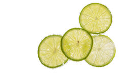 Lemon Soda. Isolated lemon slice in soda water Royalty Free Stock Image