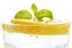 Lemon soda mint fresh drink summer refreshment isolated Stock Image