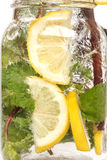 Lemon soda mint rosemary fresh drink summer isolated Royalty Free Stock Photos