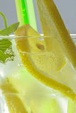 Lemon soda. Lemon slices and mint leaves in a glass of soda Royalty Free Stock Images