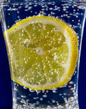 Lemon in soda water on a blue background Stock Photos