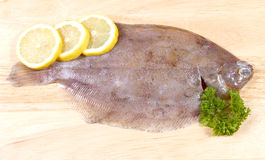 Lemon sole. A raw fresh lemon sole on a board with parsley and lemons Royalty Free Stock Photo
