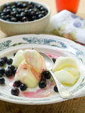 Lemon sorbet. With black currant and bowl of black currant on background Stock Image