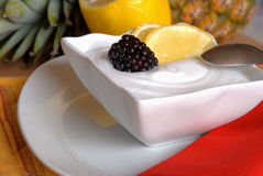 Lemon sorbet. Fresh lemon sorbet and blackberry Stock Photography