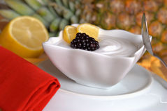 Lemon sorbet. Fresh lemon sorbet and blackberry Royalty Free Stock Images