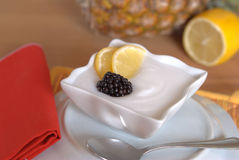 Lemon sorbet. Fresh lemon sorbet and blackberry Stock Photos