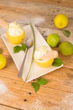 Lemon sorbet Royalty Free Stock Photo