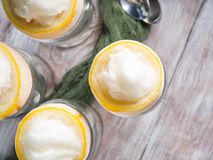 Lemon sorbet ice cream served dessert. Lemon sorbet ice cream served as gourmet dessert royalty free stock photo