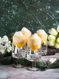 Lemon sorbet ice cream served dessert. Lemon sorbet ice cream served as gourmet dessert royalty free stock images
