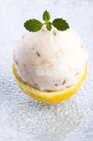 Lemon sorbet with lavender. Flowers and mint royalty free stock images