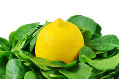 Lemon in spinach Royalty Free Stock Image