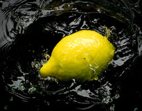 Lemon and splash water Stock Photography