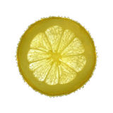 Lemon splash in water Royalty Free Stock Photography