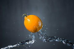 Lemon and splash of water.  Royalty Free Stock Photography