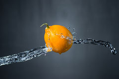 Lemon and splash of water. / Royalty Free Stock Image