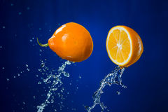 Lemon and splash of water on blue background.  Royalty Free Stock Image