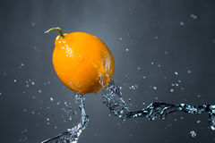 Lemon and splash of water on grey background.  Royalty Free Stock Image
