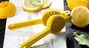 Lemon Squeezer and fresh lemons Stock Photography