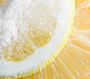 Lemon with sugar. Stock Photography