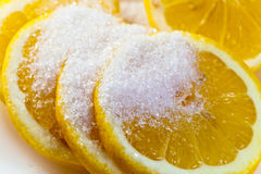 Lemon with sugar. Fresh lemon with sugar on  white plate Royalty Free Stock Photography