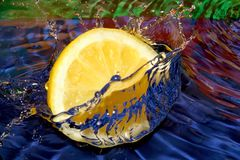 Lemon sun Stock Image