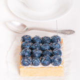 Lemon Tart and tartlets with fresh blueberries. Tart with lemon curd and fresh blueberry, top view Royalty Free Stock Photography