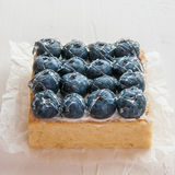 Lemon Tart and tartlets with fresh blueberries. Tart with lemon curd and fresh blueberry, top view Royalty Free Stock Images
