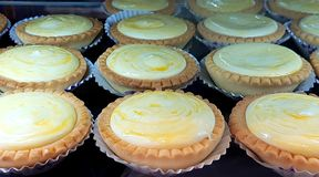 Lemon tarts just cooked and ready for a fantastic tea break. stock photo