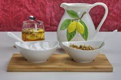 Lemon tea. With fresh fruits Royalty Free Stock Image