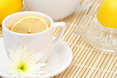 Lemon Tea. Cup of refreshing lemon tea with flower Royalty Free Stock Image