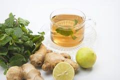 Lemon Tea with Ginger Royalty Free Stock Photo