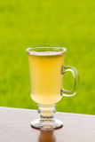 Lemon tea with honey. On wood table against green nature background Royalty Free Stock Image