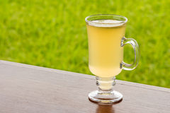 Lemon tea with honey. On wood table against green nature background Stock Image