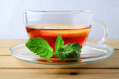 Lemon Tea with Mint Sprig Close Up Royalty Free Stock Image