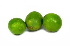 Fresh Lemon. Three Lemons on white background Royalty Free Stock Photography