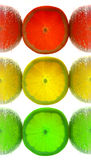 Lemon traffic light Royalty Free Stock Image