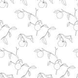 Lemon tree pattern Stock Photo