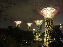 Super Trees at Gardens by the Bay, Singapore Stock Images